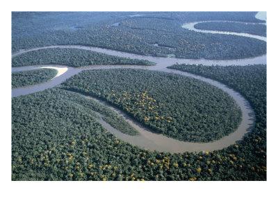 http://1.bp.blogspot.com/_VLo3C5uYOpA/Sx1sXq97mvI/AAAAAAAAAQc/zBi__1Z1WS4/s400/SuperStock_442-7806~Amazon-River-Amazon-Jungle-Brazil-Posters.jpg