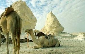 white desert 7 Inilah Keajaiban Gurun Putih Mesir Yang Eksotis